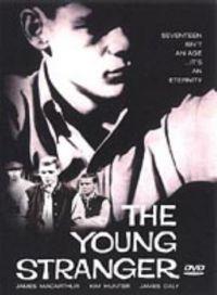 Mladý cizinec  - The Young Stranger