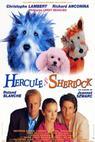 Hercule a Sherlock (1996)