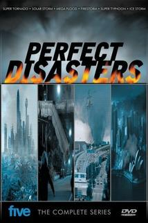 Perfect Disaster
