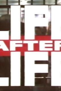 Life After Life  - Life After Life