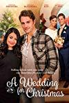 A Wedding for Christmas