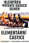 Elementární částice (2006)