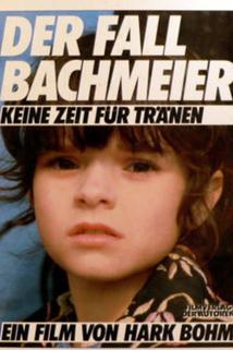 Fall Bachmeier - Keine Zeit für Tränen, Der