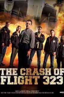 Havárie letu 323