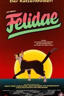 Felidae  - Felidae