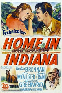 Home in Indiana  - Home in Indiana