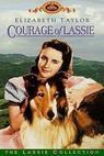 Odvážná Lassie