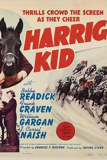 Harrigan's Kid  - Harrigan's Kid