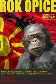 Plakát k filmu: Rok opice