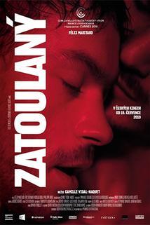 Plakát k filmu: Zatoulaný