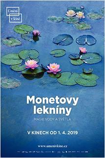 Monetovy lekníny - magie vody a světla