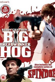 Big Breadwinner Hog