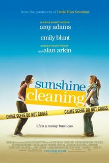 Jarní úklid s.r.o.  - Sunshine Cleaning