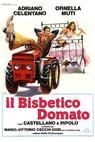 Bisbetico domato, Il (1980)