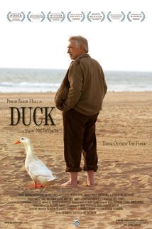 Duck  - Duck