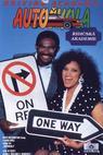 Dopravní akademie (1988)