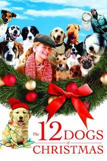 Tucet vánočních psů