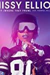Missy Elliott Feat. Pharrell Williams: WTF