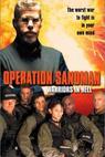 Operation Sandman