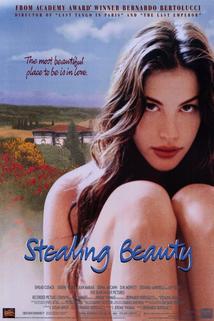 Svůdná krása  - Stealing Beauty