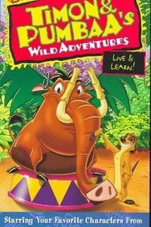 Timon and Pumbaa  - Timon & Pumbaa