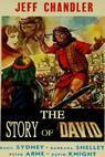 Davidův příběh