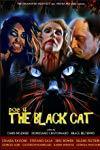 POE 4: The Black Cat