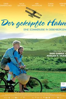 Geköpfte Hahn, Der