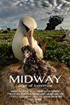 Midway: Edge of Tomorrow