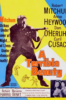 A Terrible Beauty  - A Terrible Beauty