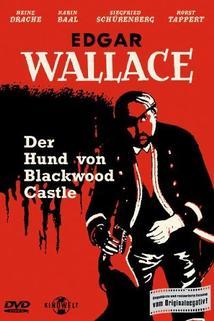 Hund von Blackwood Castle, Der