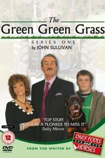 The Green Green Grass  - The Green Green Grass