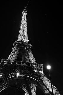 The Man Who Saved Paris ()