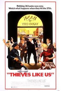 Zloději jako my
