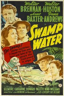 Bažiny  - Swamp Water