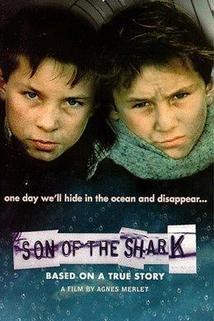 Fils du requin, Le