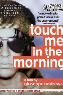 Touch Me in the Morning