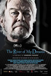 The River of My Dreams  - The River of My Dreams