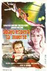 Delitto d'amore (1966)