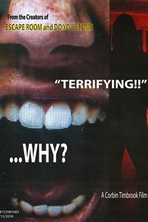 Why?  - Why?