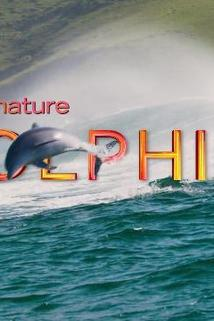 Dolphin Reef ()