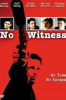 Beze svědků