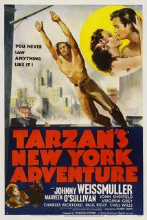 Tarzanovo newyorské dobrodružství  - Tarzan's New York Adventure