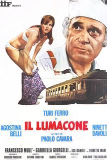 Lumacone, Il