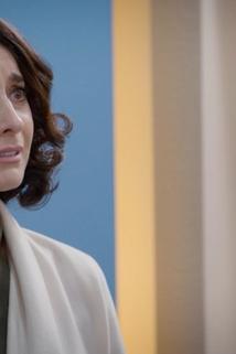 Mi marido tiene familia - Susana se hace responsable por el accidente de Julieta  - Susana se hace responsable por el accidente de Julieta
