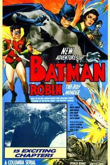 Batman and Robin  - Batman and Robin