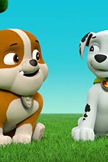 Tlapková patrola - Pups save a Bookmobile/Pups Save a Heady Humdinger  - Pups save a Bookmobile/Pups Save a Heady Humdinger