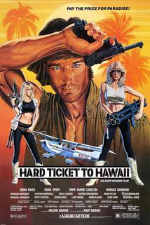 Hard Ticket to Hawaii  - Hard Ticket to Hawaii