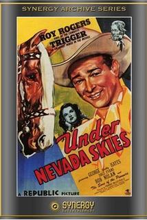 Under Nevada Skies
