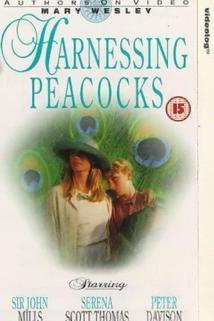 Harnessing Peacocks  - Harnessing Peacocks